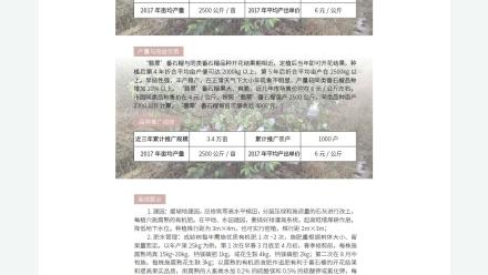 广东省农业农村厅-2019年农业主导品种: 翡翠番石榴