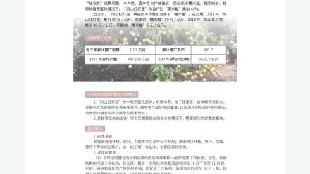 广东省农业农村厅-2019年农业主导品种:凤山红灯笼荔枝